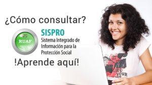 Cómo hacer una consulta en el sistema SISPRO RUAF