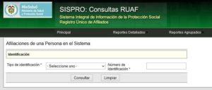 Cómo hacer una consulta en el sistema SISPRO RUAF pasos