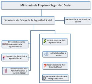 El Seguro Social y sus organismos de trabajo