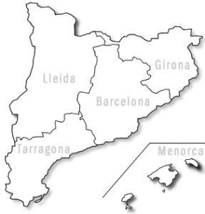 Organización territorial CatSalut