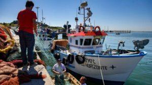 Especialidades Formativas SERVEF. Marítimo pesquera
